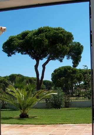 Maison de vacances Golfvilla mit Pool/Haupthaus (5348), El Rompido, Costa de la Luz, Andalousie, Espagne, image 10