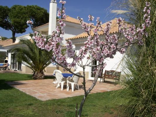 Maison de vacances Golfvilla mit Pool/Haupthaus (5348), El Rompido, Costa de la Luz, Andalousie, Espagne, image 12