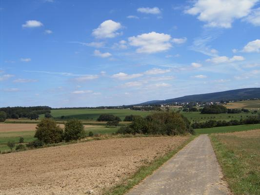 Ferienwohnung im Hunsrück (5383), Morbach, Hunsrück, Rheinland-Pfalz, Deutschland, Bild 17