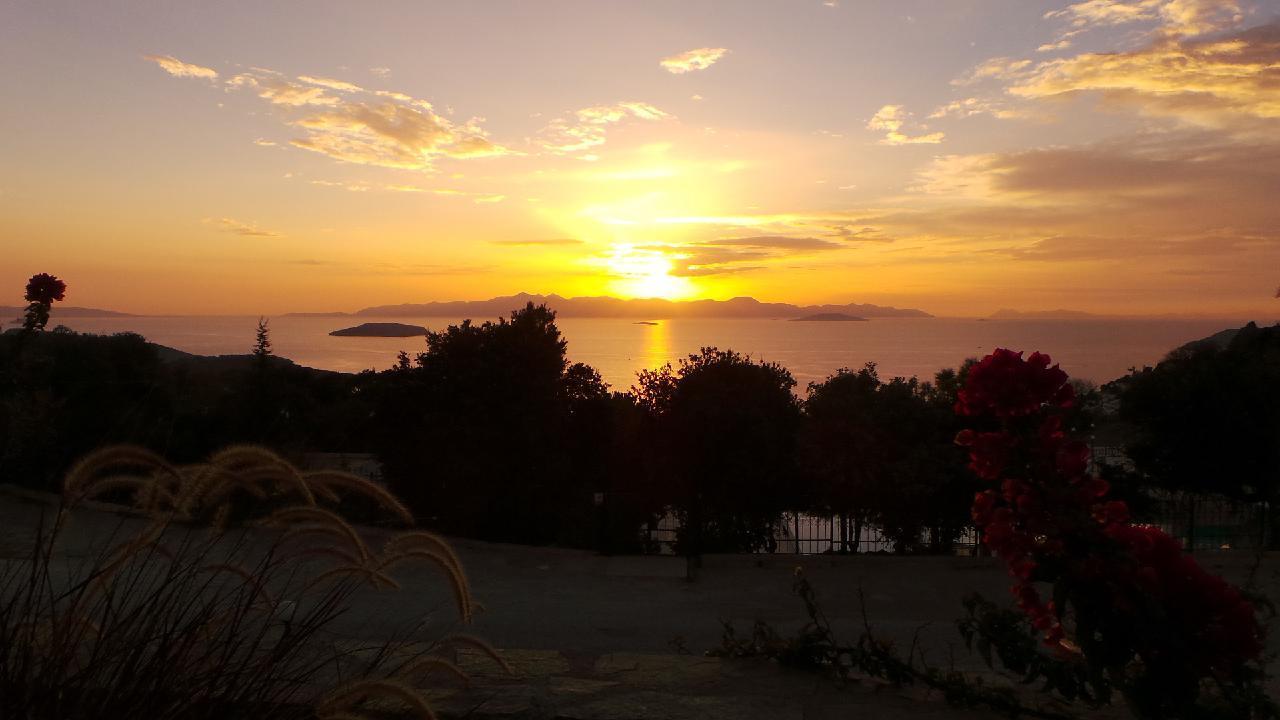 Ferienhaus VILLA DELPHIN - BODRUM GÜMÜSLÜK - Mit Märchenhaftem Natur und Meerblick (502386), Koyunbaba, , Ägäisregion, Türkei, Bild 40