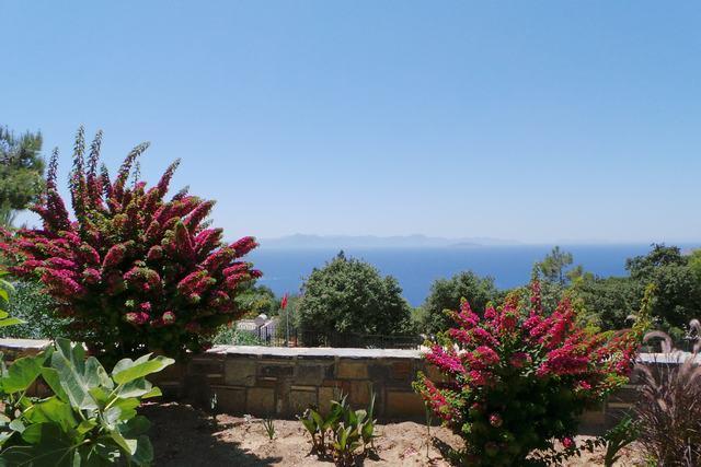 Ferienhaus VILLA DELPHIN - BODRUM GÜMÜSLÜK - Mit Märchenhaftem Natur und Meerblick (502386), Koyunbaba, , Ägäisregion, Türkei, Bild 21