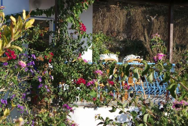 Ferienhaus VILLA DELPHIN - BODRUM GÜMÜSLÜK - Mit Märchenhaftem Natur und Meerblick (502386), Koyunbaba, , Ägäisregion, Türkei, Bild 19