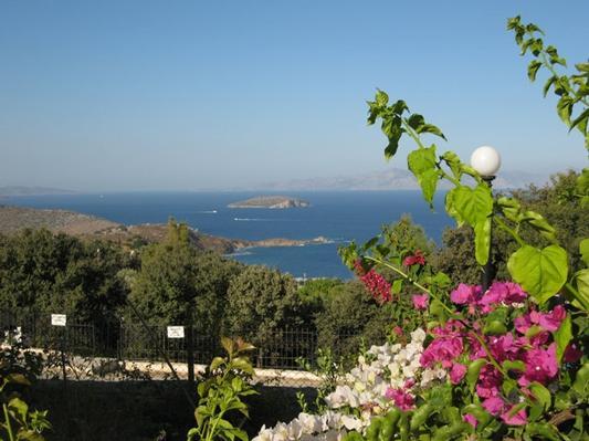 Ferienhaus VILLA DELPHIN - BODRUM GÜMÜSLÜK - Mit Märchenhaftem Natur und Meerblick (502386), Koyunbaba, , Ägäisregion, Türkei, Bild 12