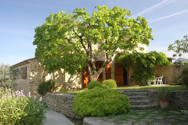 Maison de Lavande (nähe Puyméras) - Objektnummer: 502817