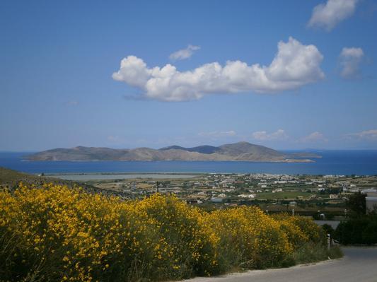 Holiday house Villa Ulla (507237), Andimachia, Kos, Dodecanes Islands, Greece, picture 27
