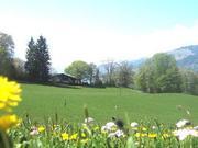 Chalet Halteweidli Ferienhaus