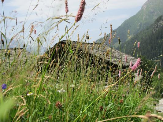 Ferienhaus Chalet Chiara (555111), Casaccia, Bergell, Graubünden, Schweiz, Bild 15