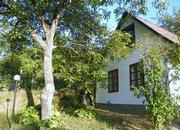 Komfortables Ferienhaus in den Weinbergen, bei abs Ferienhaus in Ungarn
