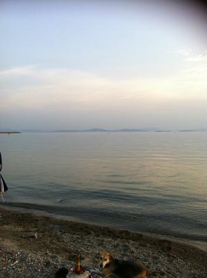 Ferienwohnung Ferienwohnug (594835), Candarli, , Ägäisregion, Türkei, Bild 11