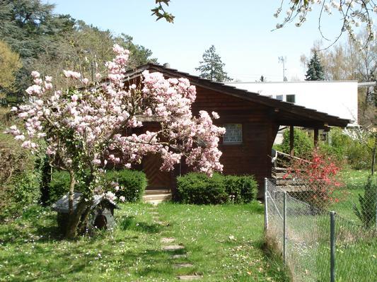 Maison de vacances chalet-magnolia (602207), Versoix, Genève, Vaud, Suisse, image 2