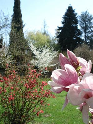 Maison de vacances chalet-magnolia (602207), Versoix, Genève, Vaud, Suisse, image 15
