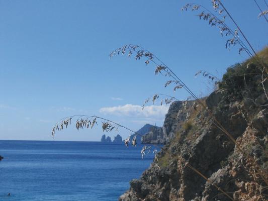 Ferienwohnung Bungalow  Standard 3-4 Plätze (612514), Massa Lubrense, Amalfiküste, Kampanien, Italien, Bild 7