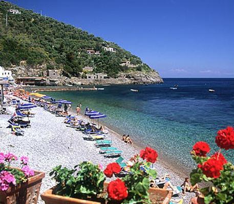 Ferienwohnung Bungalow  Standard 3-4 Plätze (612514), Massa Lubrense, Amalfiküste, Kampanien, Italien, Bild 10