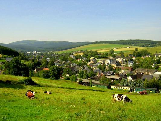 Ferienwohnung Nichtraucher Fewo Ebert&Green (614815), Sehmatal-Neudorf, Erzgebirge, Sachsen, Deutschland, Bild 19
