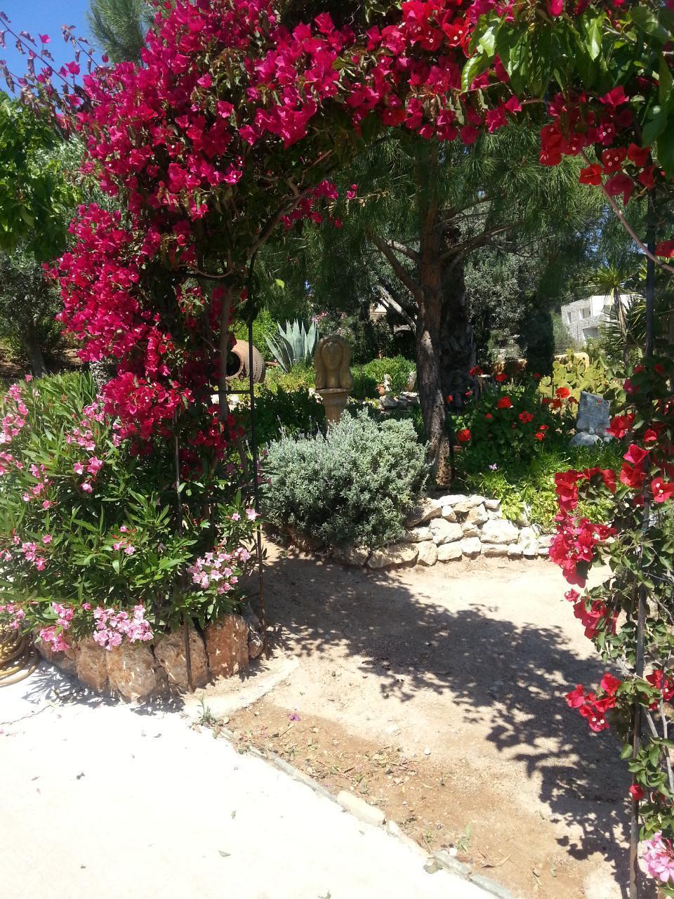 Ferienwohnung Villa mit Charme in Strandnähe (624377), Porto Cheli, , Peloponnes, Griechenland, Bild 25