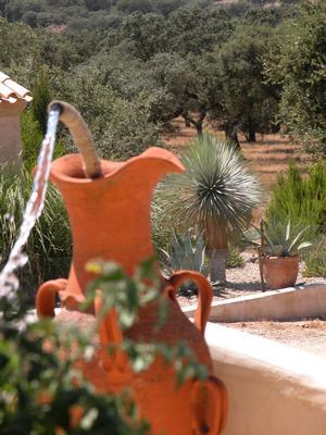 Ferienhaus Exklusive Villa in idyllischer Lage, gr. Veranda, Salzwasser-Pool, Kräutergarten (660572), Vimieiro, , Alentejo, Portugal, Bild 13