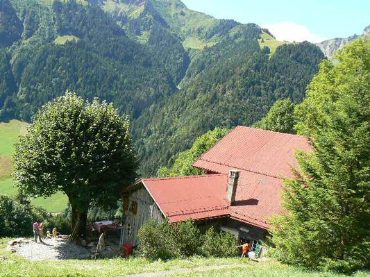 Maison de vacances Heidi chalet (665330), Rossinière, Alpes vaudoises, Vaud, Suisse, image 21