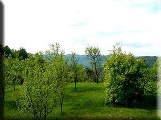 Maison de vacances Amalia (Coprnicka hisa) (679288), Skrad, , Kvarner, Croatie, image 17