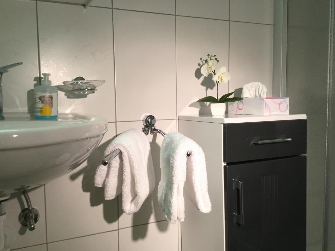 Ferienwohnung für 2 - 5 Personen mit zwei getrennten Schlafzimmern (692149), Saas Almagell, Saastal, Wallis, Schweiz, Bild 13