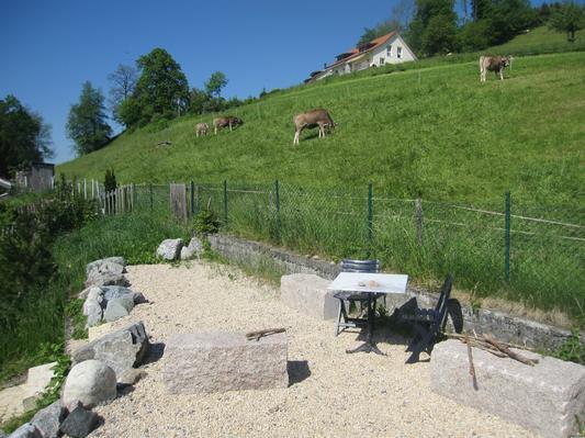Ferienwohnung Pilgerwohnung (693404), Wald ZH, Zürcher Oberland, Zürich, Schweiz, Bild 9