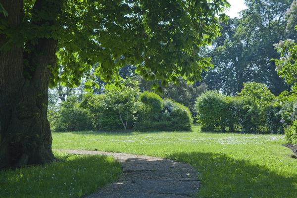 Ferienwohnung Röbel (703036), Röbel, Müritz, Mecklenburg-Vorpommern, Deutschland, Bild 4