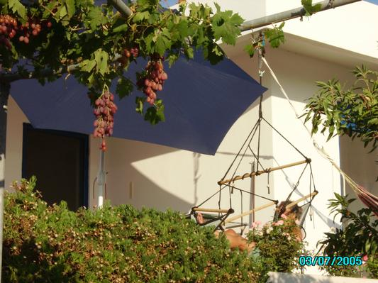 Holiday house Freistehender Bungalow (726479), Kritinia, Rhodes, Dodecanes Islands, Greece, picture 15