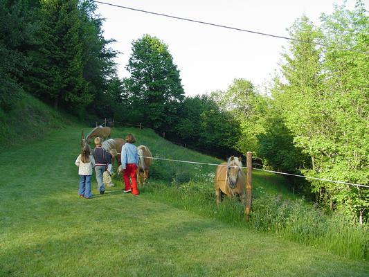 Maison de vacances Almchalet Orter (757480), Deutschberg, Lac Ossiach, Carinthie, Autriche, image 3