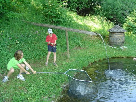 Maison de vacances Almchalet Orter (757480), Deutschberg, Lac Ossiach, Carinthie, Autriche, image 4