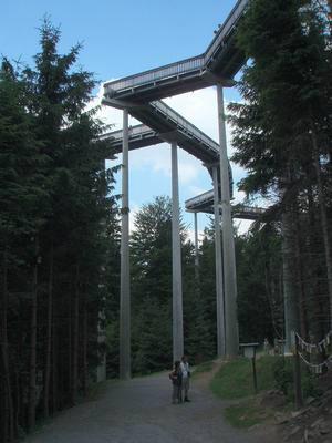 Ferienhaus Waldschrat Fam.Ibisch  - inklusive aller Nebenkosten - (758023), Zandt, Bayerischer Wald, Bayern, Deutschland, Bild 23