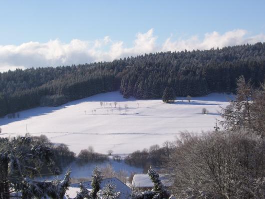 Ferienwohnung Bauernhof Matt (766535), Herrischried, Schwarzwald, Baden-Württemberg, Deutschland, Bild 14