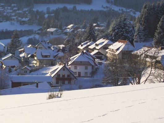 Ferienwohnung Bauernhof Matt (766535), Herrischried, Schwarzwald, Baden-Württemberg, Deutschland, Bild 15