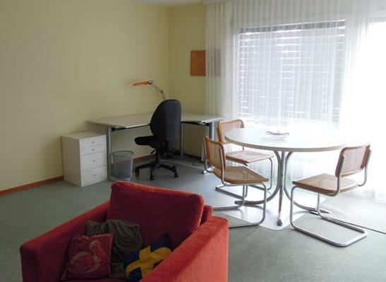 Ferienwohnung 2,5 Zimmer Wohnung an ruhiger Lage; Nichtraucher; top neu renoviert, (769446), Forch, Zürich (Stadt), Zürich, Schweiz, Bild 4
