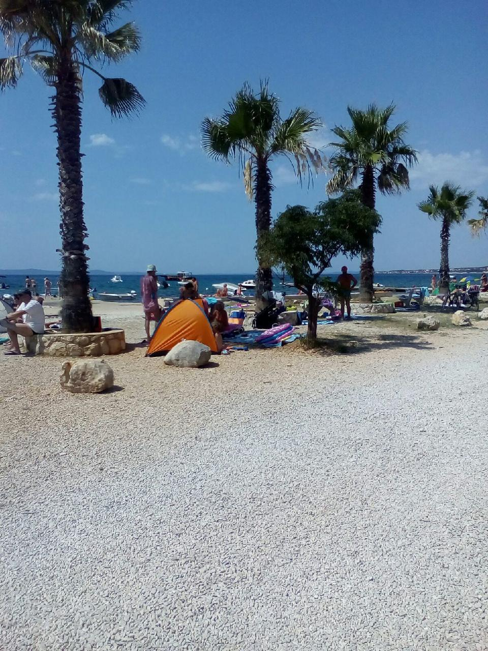 Ferienwohnung Appartement 1 (77834), Vir, Insel Pag, Kvarner, Kroatien, Bild 20