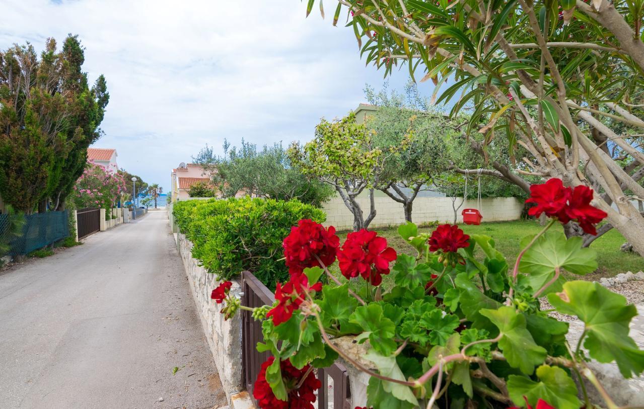 Ferienwohnung Appartement 2 (77836), Vir, Insel Pag, Kvarner, Kroatien, Bild 4