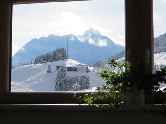 Ferienwohnung Gästehaus am Berg, Ferienwohnung Widderstein, 1 Schlafzimmer (772003), Hirschegg, Kleinwalsertal, Vorarlberg, Österreich, Bild 5