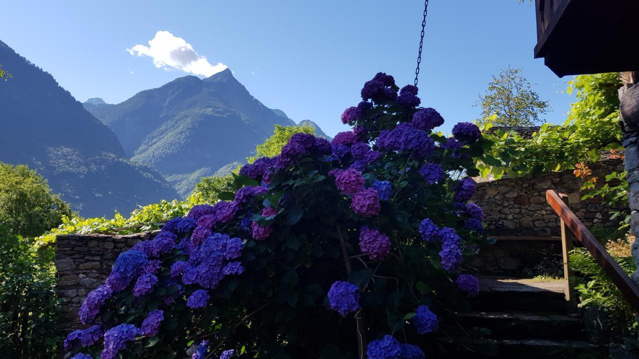 Maison de vacances Casa Giardino Grande (772133), Semione, Vallée de Blenio, Tessin, Suisse, image 33
