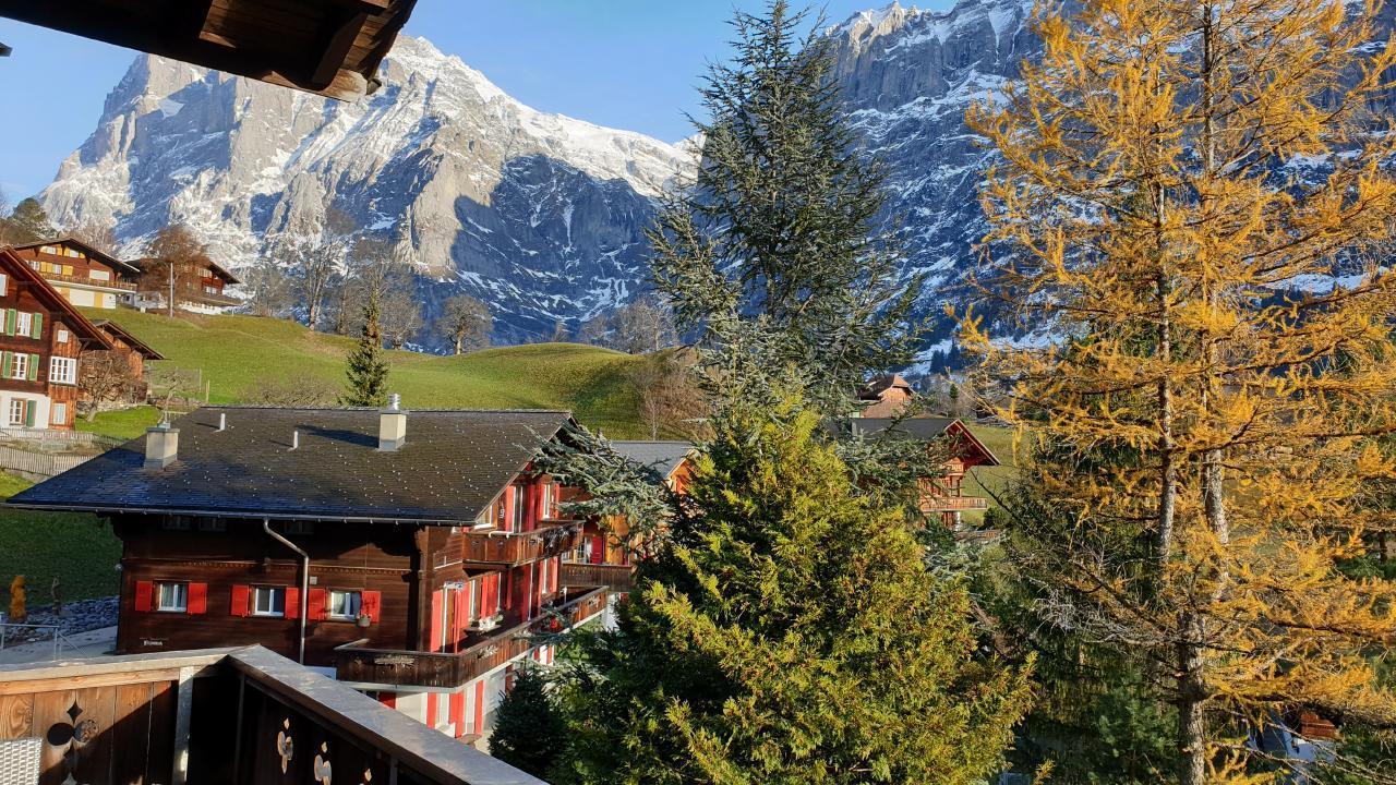 Ferienwohnung Chalet Moosrain 4.5 Zimmer-Wohnung, Eigerblick (788969), Grindelwald, Jungfrauregion, Berner Oberland, Schweiz, Bild 17