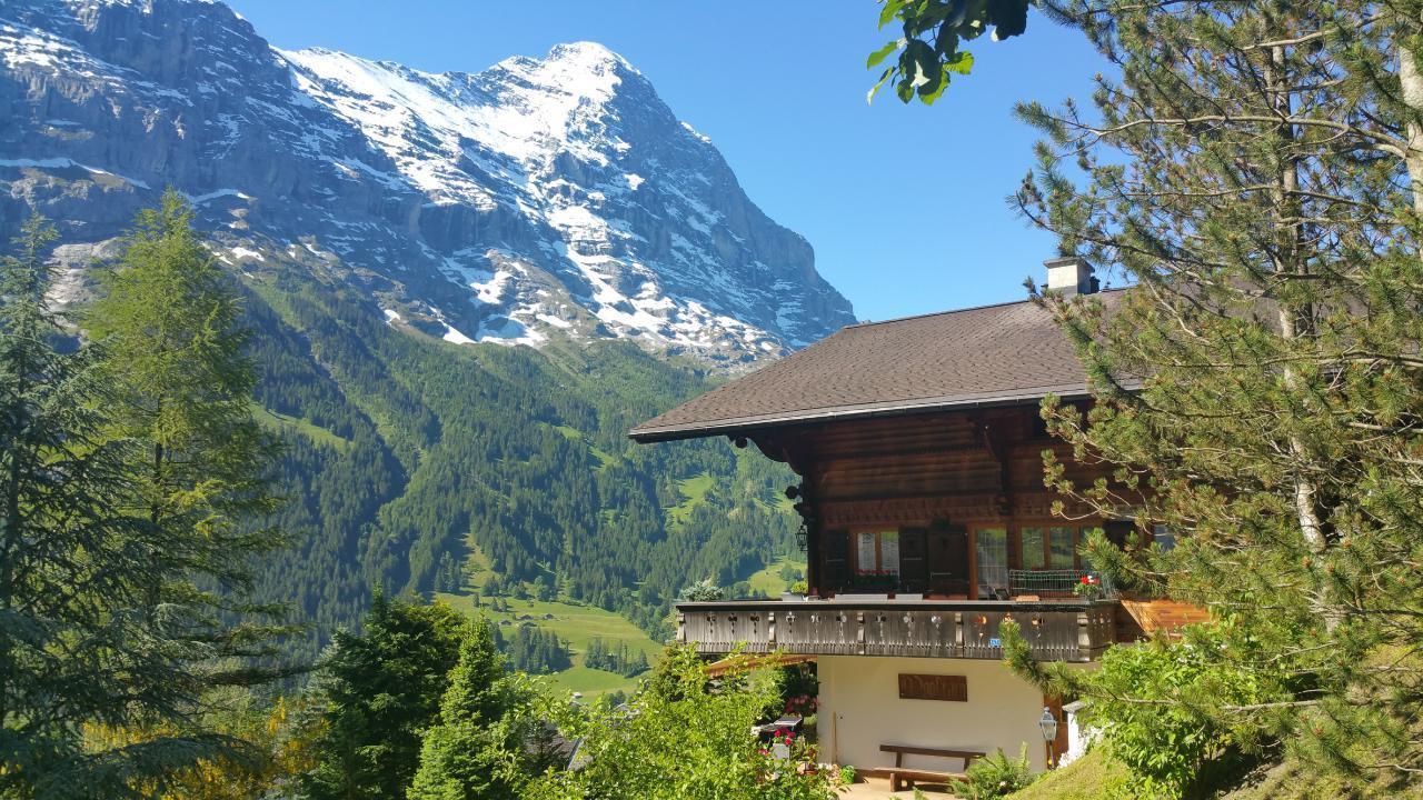 Ferienwohnung Chalet Moosrain 4.5 Zimmer-Wohnung, Eigerblick (788969), Grindelwald, Jungfrauregion, Berner Oberland, Schweiz, Bild 16