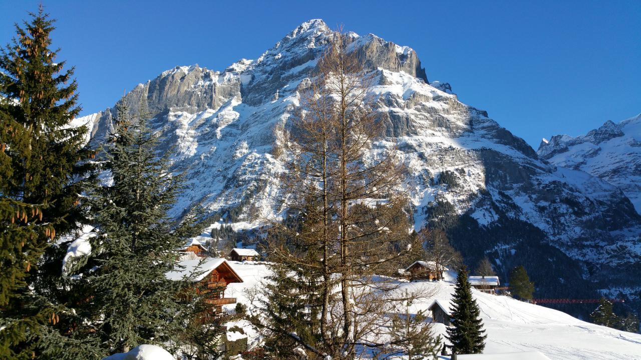 Ferienwohnung Chalet Moosrain 4.5 Zimmer-Wohnung, Eigerblick (788969), Grindelwald, Jungfrauregion, Berner Oberland, Schweiz, Bild 19