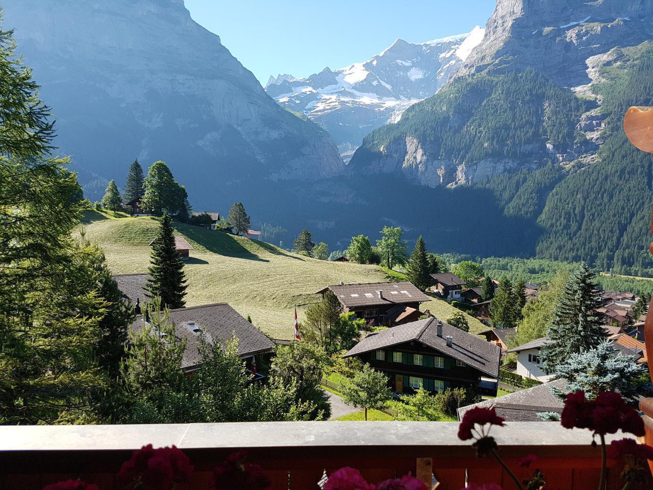 Ferienwohnung Chalet Moosrain 4.5 Zimmer-Wohnung, Eigerblick (788969), Grindelwald, Jungfrauregion, Berner Oberland, Schweiz, Bild 9