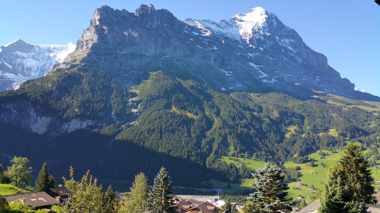 Ferienwohnung Chalet Moosrain 4.5 Zimmer-Wohnung, Eigerblick (788969), Grindelwald, Jungfrauregion, Berner Oberland, Schweiz, Bild 14