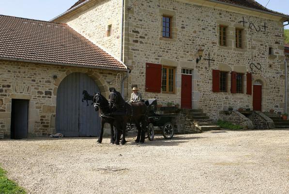 Ferienhaus Chateau Beaucharmoy. Ein Teil einem Schloss, qualitativ hochwertig möbliert und eingericht (789041), Champigny sous Varennes, Haute-Marne, Champagne-Ardennes, Frankreich, Bild 5