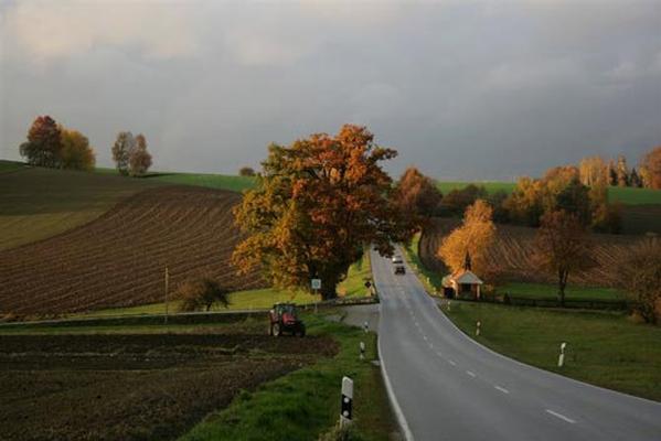Ferienwohnung Altes Schulhaus in Leithen - Bernried (79131), Bernried, Bayerischer Wald, Bayern, Deutschland, Bild 27