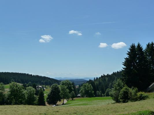 Ferienwohnung Gästehaus Dummer/ Ferienwohnung Gugelturm (817278), Herrischried, Schwarzwald, Baden-Württemberg, Deutschland, Bild 13