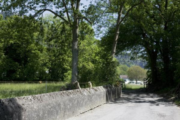 Maison de vacances Heidihuus - Ferienhaus*** im sonnigen Heidiland (817543), Maienfeld, Pays d'Heidi, Suisse Orientale, Suisse, image 16