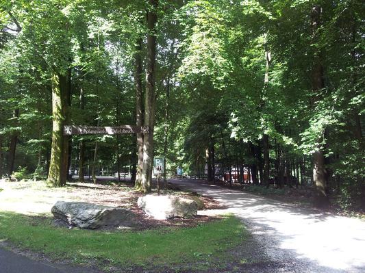 Ferienwohnung Hochwaldblick 2 (834604), Morbach, Hunsrück, Rheinland-Pfalz, Deutschland, Bild 15
