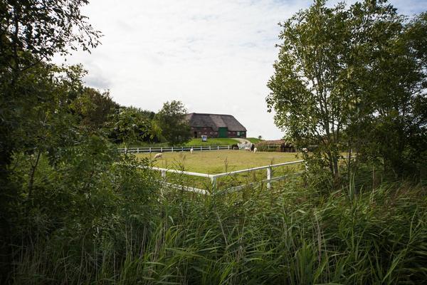 Ferienwohnung Exklusives Apartment in Reetdach-Bauernhaus, Gartensauna, Terrasse, Mosaikboden (839222), Pellworm, Pellworm, Schleswig-Holstein, Deutschland, Bild 15