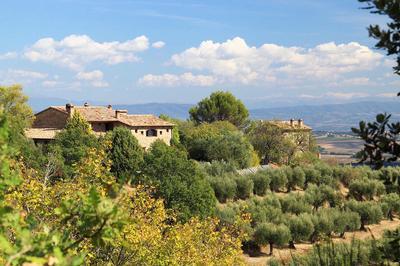 Ferienwohnung ALBA La casetta nel bosco (860769), Castiglione della Valle, Perugia, Umbrien, Italien, Bild 1