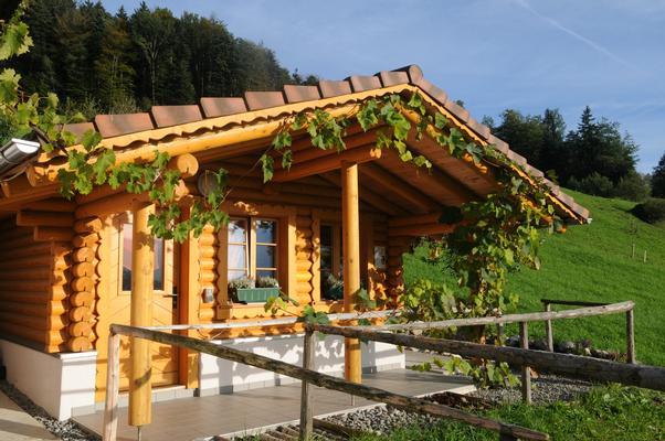 Ferienwohnung Schwarzenbachhof (862397), Steinen (Zentralschweiz), Schwyz, Zentralschweiz, Schweiz, Bild 6