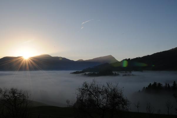 Ferienwohnung Schwarzenbachhof (862397), Steinen (Zentralschweiz), Schwyz, Zentralschweiz, Schweiz, Bild 13